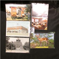 1961 Iowa Falls, Ia. Postcard; (7) Newton, Ia. Postcards; & a Mount Pleasant Quack Doctor Postcard.
