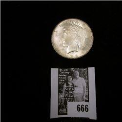 1928 P U.S. Silver Peace Dollar, light gray toned Brilliant Uncirculated.