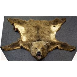 Authentic Bear Rug