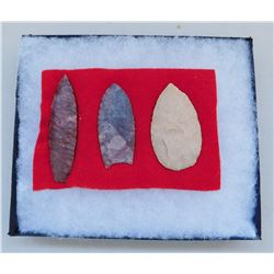 Texas Paleo Artifacts