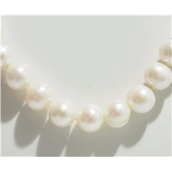 FRESHWATER PEARL NECKLACE W/ ST SILVER  CLASP