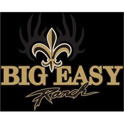 Texas: Big Easy Ranch - Columbus