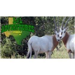 Texas:  L & L Adventures – Wimberley