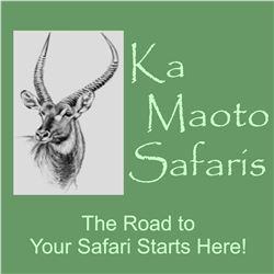 South Africa: Ka Maoto Safaris - Northwest Province