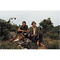 Spain: Hunt In Spain - Salamanca