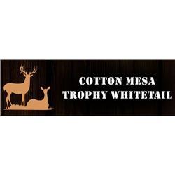 Texas: Cotton Mesa Trophy Whitetail Ranch - Corsicana