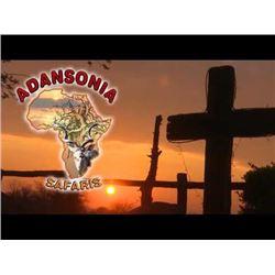 South Africa: Adansonia Safaris