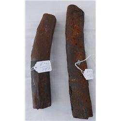 Dinosaur Rib Bone Fossils