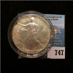 1993 U.S. American Silver Dollar One Ounce .999 Fine Silver. Brilliant Uncirculated with a hint of p