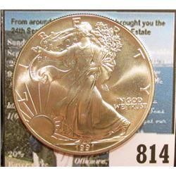 1991 U.S. American Silver Dollar One Ounce .999 Fine Silver. Brilliant Uncirculated.