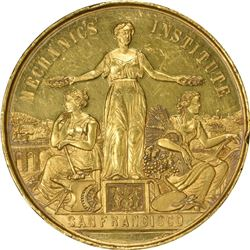 San Francisco. 1886 Mechanics Institute San Francisco Gold Medal. 49 mm. Named. AU or so.