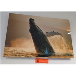 """Wall Art - Photo of Humpback Whale on Canvas, Signed, 16"""" x 12"""""""