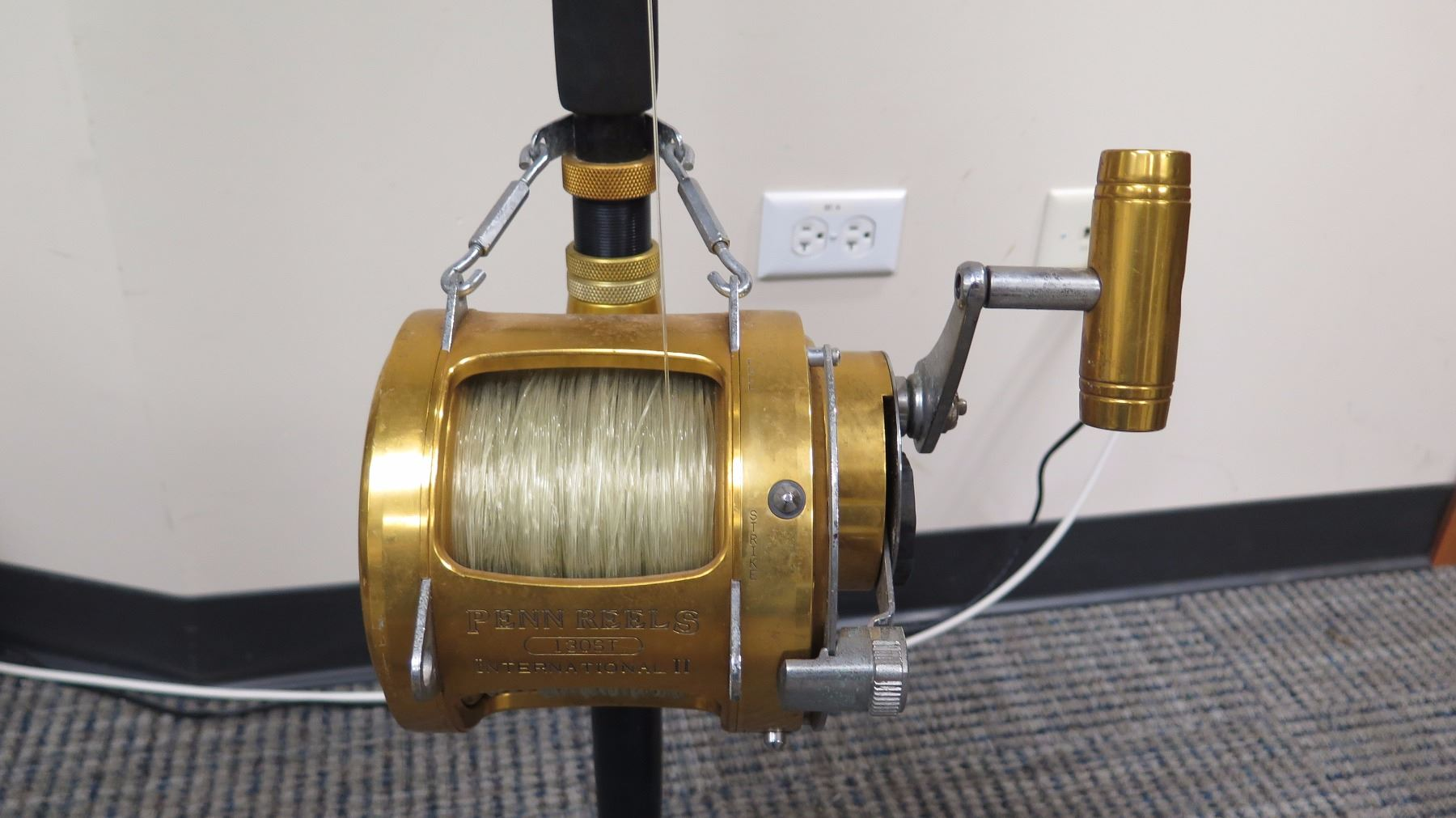 Fishing Rod (Anela) and Gold Reel (Penn Reels 130ST