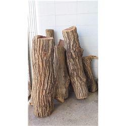 Milo Wood Log Segments for Woodworking