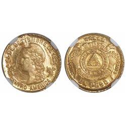 Honduras, 1 peso, 1896, encapsulated NGC MS 64, finest known in NGC census, ex-Richard Stuart (desig