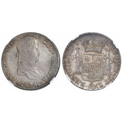 Cuzco, Peru, bust 8 reales, Ferdinand VII, 1824T, encapsulated AU details / surface hairlines.