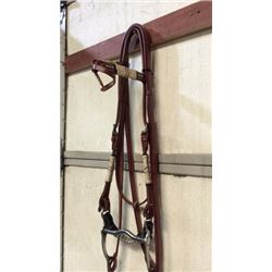 Fancy Show Bridle With Rawhide