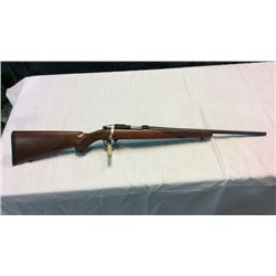 Ruger Model 77/22 .22lr
