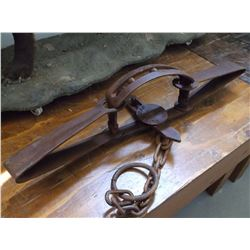 "Duke #5 Grizzly Bear Trap- Teeth- Chain With Swivel- 35""L"