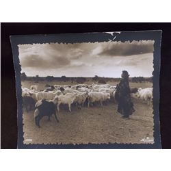 Original William Pennington Gallery Photo- Navajo- 1930 Mancos Colorado- Appraised By Antique Road S