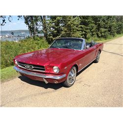 NO RESERVE! 1964 1/2 FORD MUSTANG CONVERTIBLE