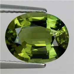 Natural Olive Green Tourmaline 3.065 Carats - VVS
