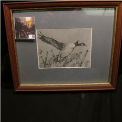 "10"" x 11"" Framed Black & White of a Canada Goose flying over Corn Stalks, no obvious signature."
