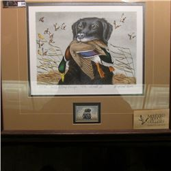 #23/90 Duck Stamp Design -1959- colored edition Print of a Black Labrador with a Mallard. Personally