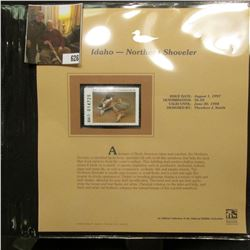 1997 Idaho $6.50 Waterfowl Stamp, Northern Shoveler, Mint, unused, in original holder with literatur