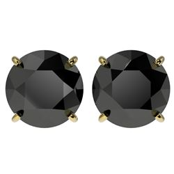 4 CTW Fancy Black VS Diamond Solitaire Stud Earrings 10K Yellow Gold - REF-96W9H - 33136