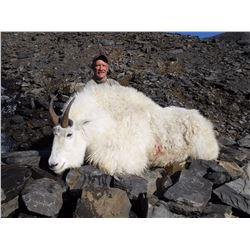 Governor's Goat Tag-Kodiak Island