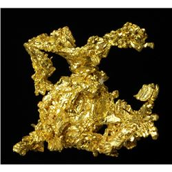 Gold Specimen from Michigan Bluff, California