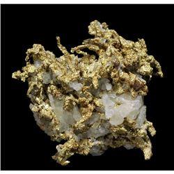 Wire Gold in Quartz from Ibex Mine, Leadville, Colorado