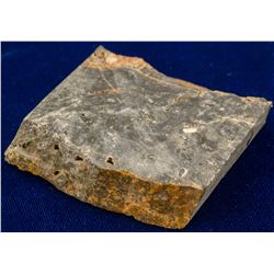 Outback Nevada, Burned Petrified Wood, with Minor Native Gold