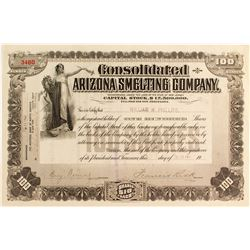 Consolidated Arizona Smelting Company Stock Certificate