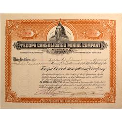 Tecopa Cons. Mining Co. Stock Certificate, Death Valley 1911