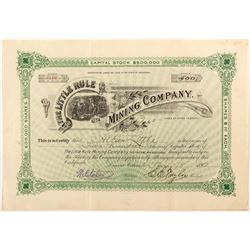 Little Rule Mining Company Stock Certificate