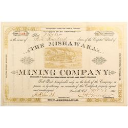 The Mishakawa Mining Company Stock Certificate (Leadville, CO)