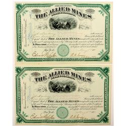 Two The Allied Mines Stock Certificates (Ouray, Colorado)