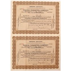 Two Pacific Tungsten Company Stock Certificates