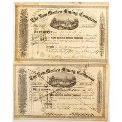 New Mexico Mining Company Certificates