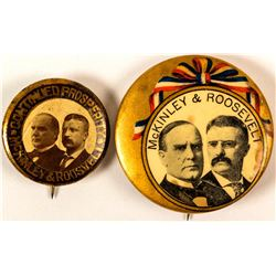 2 Different McKinley and Roosevelt Jugate Buttons