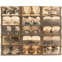 15 Hawaiian Stereoviews