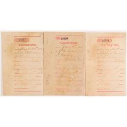 Territorial Benton, Montana License Receipts for Billiards