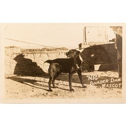 """Nig"" the Boulder Dam Mascot Real Photo Postcard"