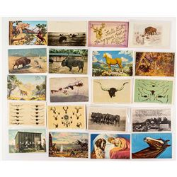 Animals of the Old West Postcard Group