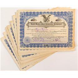 United Western Mines Corporation Reorganized Stock Certificates (17)