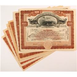 Consolidated Arizona Smelting Company Stock Certificates (6)