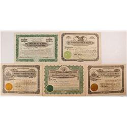 Five Different Arizona Mining Stock Certificates
