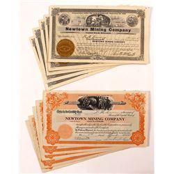 Newtown Mining Company Stock Certificates (13)